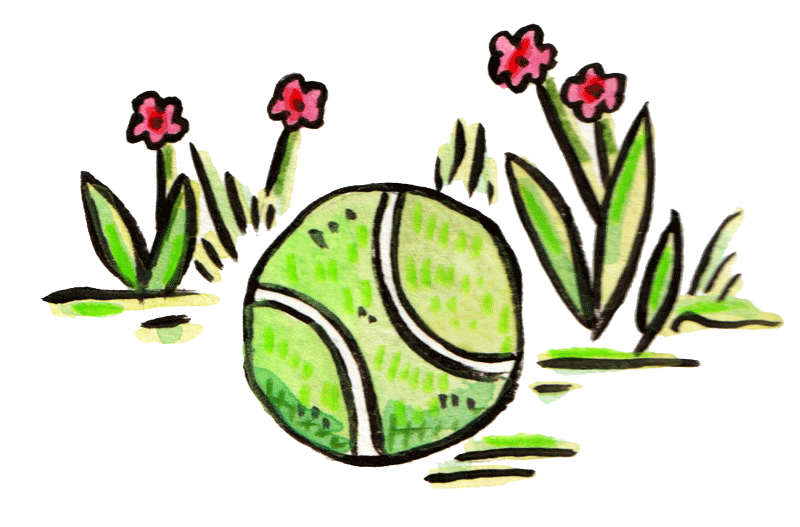 illustration of tennis ball with grass and flowers in the background © Gracie H Vandiver